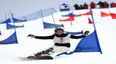 первый этап Кубка континента по сноуборду и второй этап Кубка России