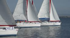 регата Ocean Medi Cup