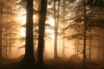 фото Татьяны Галаган с Чемпионата Карпат 2006: палаточный лагерь боулдеров; ждем новых фото