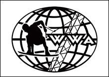 Открытый Чемпионат Киева по вейкбордингу